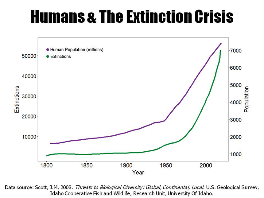 Human activity is causing the greatest mass extinction of species since the extinction of the dinosaurs 65 million years ago, at rates of 1,000 to 10,000 faster than normal. (Center for Biological Diversity)