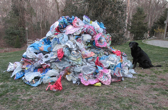 A year's worth of mylar balloons collected by Geoff Dennis in 2016 from Little Compton beaches. (Courtesy photo)