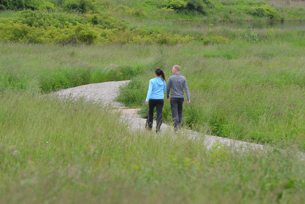 The constructed wetland at Middletown Valley is designed to reduce bacteria loading into Bailey Brook, which feeds two Newport Water drinking supplies. The site also features walking trails.