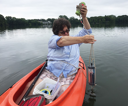 Watershed Watch volunteer Laura Maxwell takes a water sample from Mashapaug Pond. (Holly Ewald)