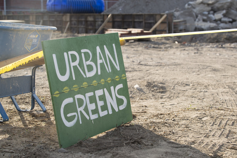 The Urban Greens food co-op is being built on a remediated brownfield on Cranston Street in Providence. (Joanna Detz/ecoRI News phtos)