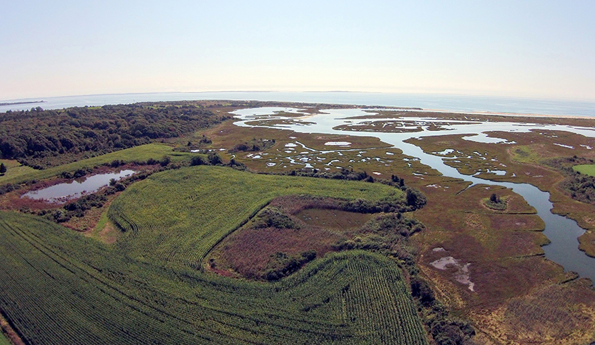 The 115-acre Ocean View Farm is part of a larger land conservation initiative on Allens Pond. (Dartmouth Natural Resources Trust)