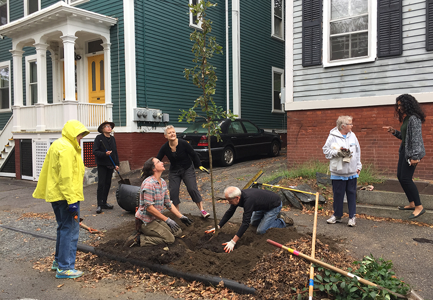 A group of new 'arborists' make sure the tree they just planted on Williams Street in Providence is standing straight. (PNPP).