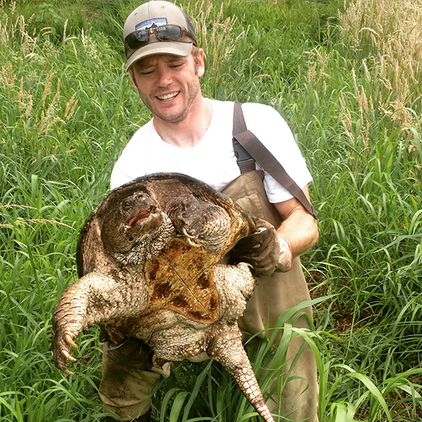 URI doctoral student Scott Buchanan handles a snapping turtle. He found plenty of them during his three years of research. (Courtesy photo)