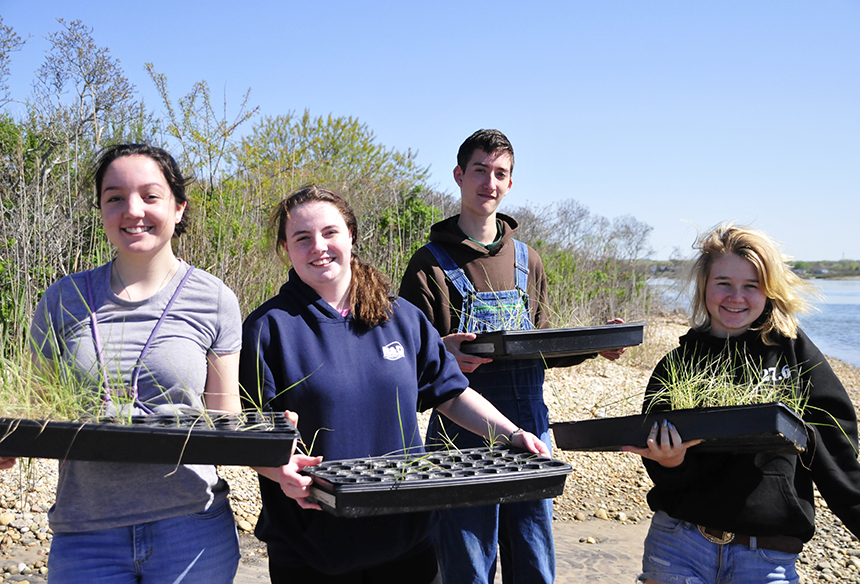 Chariho High School students are working to a restore a vulnerable marsh at Ninigret Pond. (Todd McLeish/ecoRI News)