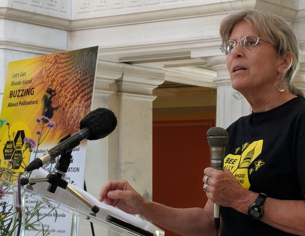 Meg Kerr of the Audubon Society of Rhode Island led the June 19 Bee Rally at the Rhode Island Statehouse. (Tim Faulkner/ecoRI News)