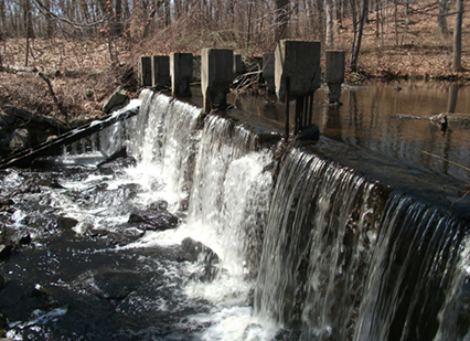 The dam at Shady Lea Mill will soon be gone. (STB)