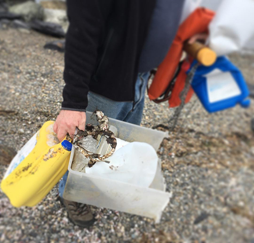 A small sampling of the types of plastic that litter the Rhode Island shoreline, in this case Portsmouth. (Joanna Detz/ecoRI News)
