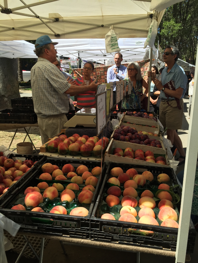 Follow the Chef Farmers' Market Tour