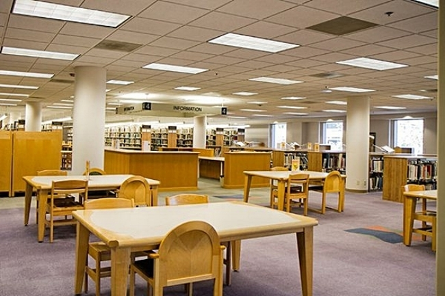 5 Reasons to Love the Library