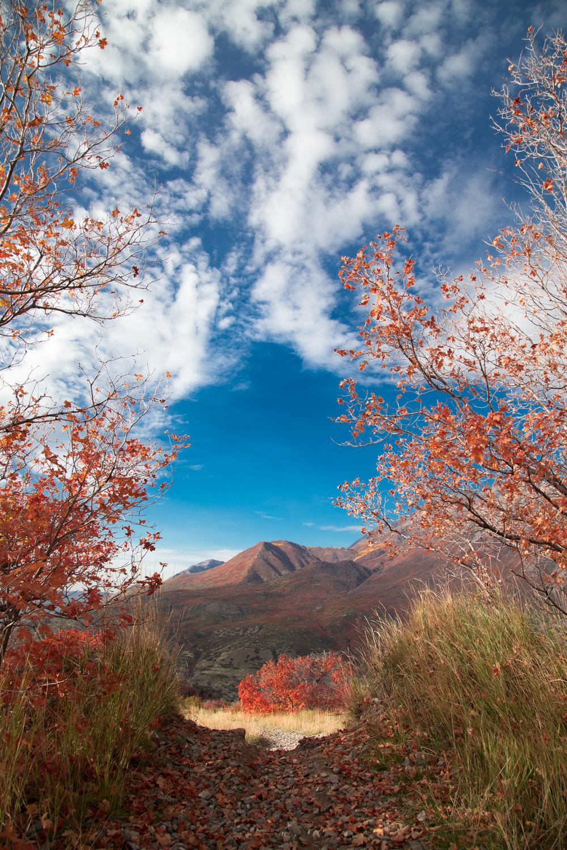 Squaw_Peak-8541.jpg