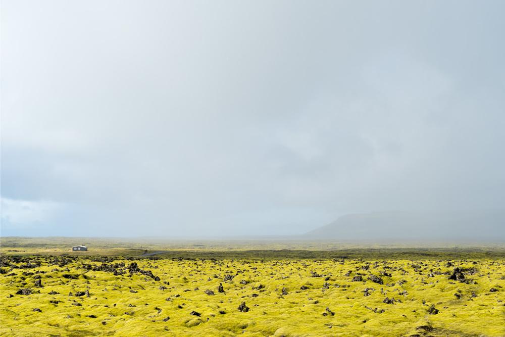 landscapes_005.jpg