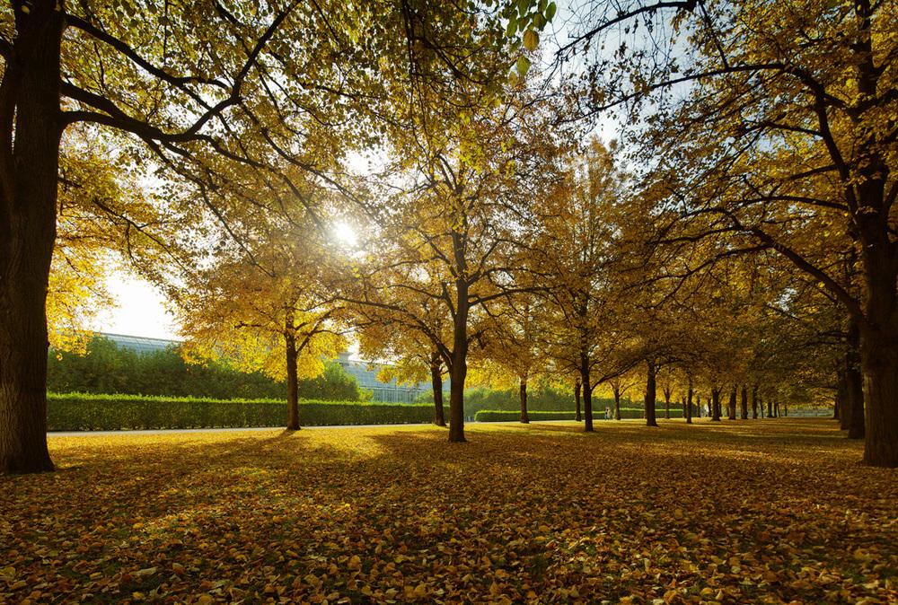 landscapes_012.jpg