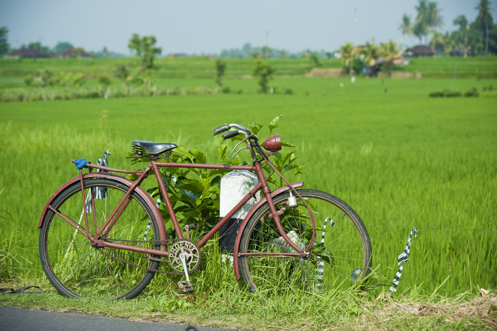 Foreground interest. Instead of photographing the rice field alone, I have added some life into it. The bike shows a way of transport, a way of life. It also adds depth and three dimension to the photograph.