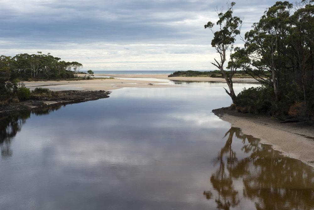 Tasmania0317-12.jpg