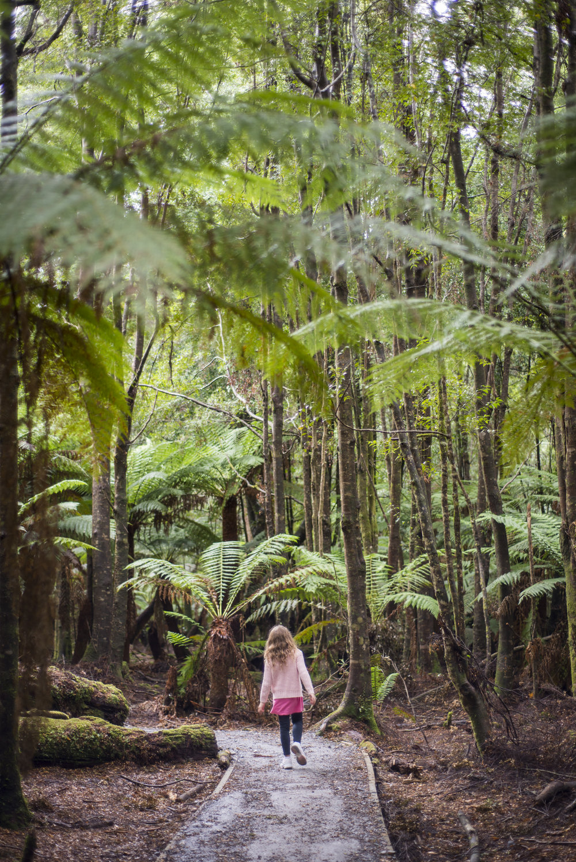 Tasmania0317-50.jpg