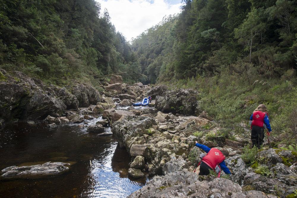 Tasmania0317-150.jpg