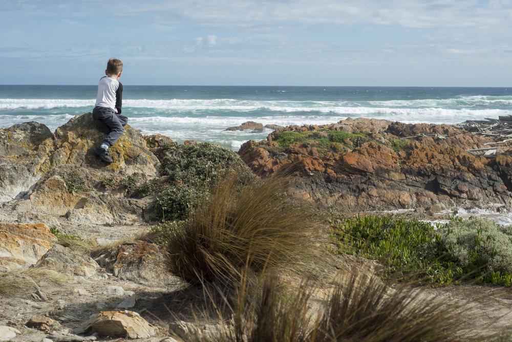Tasmania0317-166.jpg