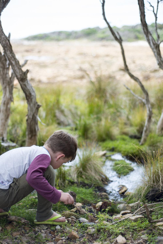Tasmania0317-758.jpg