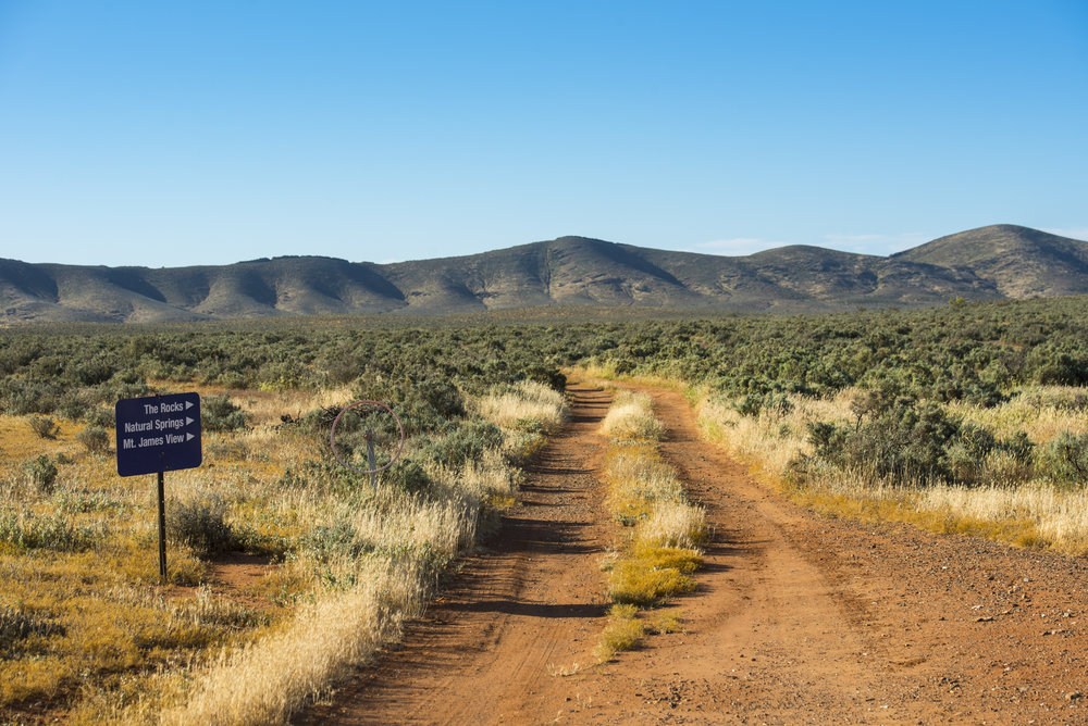 FlindersRanges011116-268.jpg