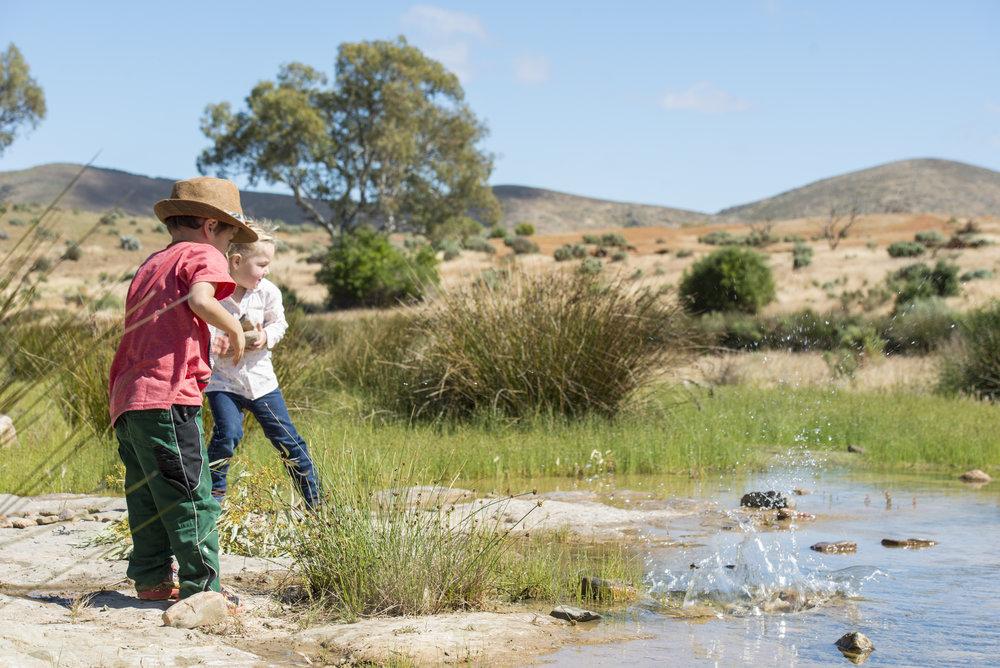 FlindersRanges011116-496.jpg