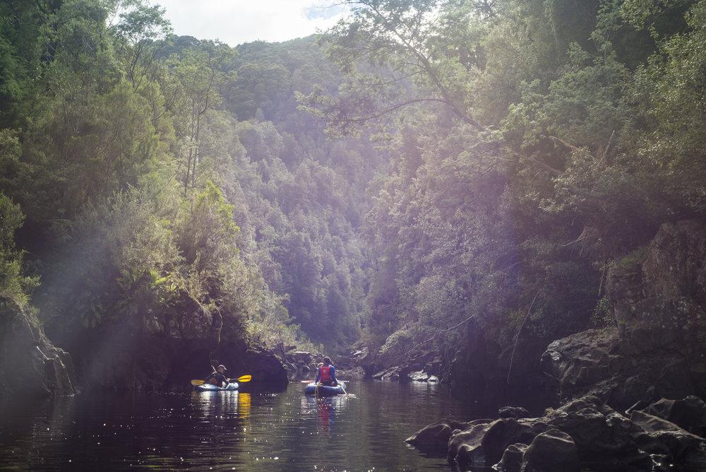 Tasmania0317-54.jpg