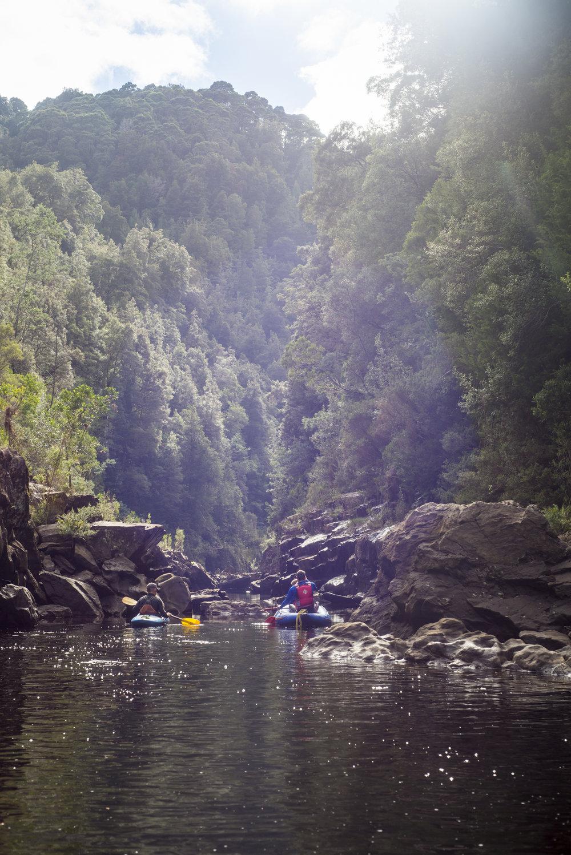 Tasmania0317-59.jpg