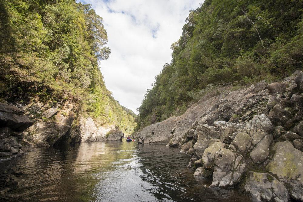 Tasmania0317-143.jpg