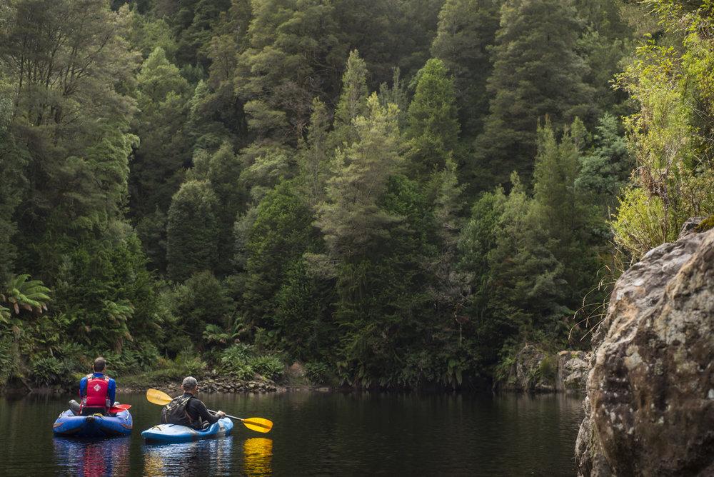 Tasmania0317-234.jpg