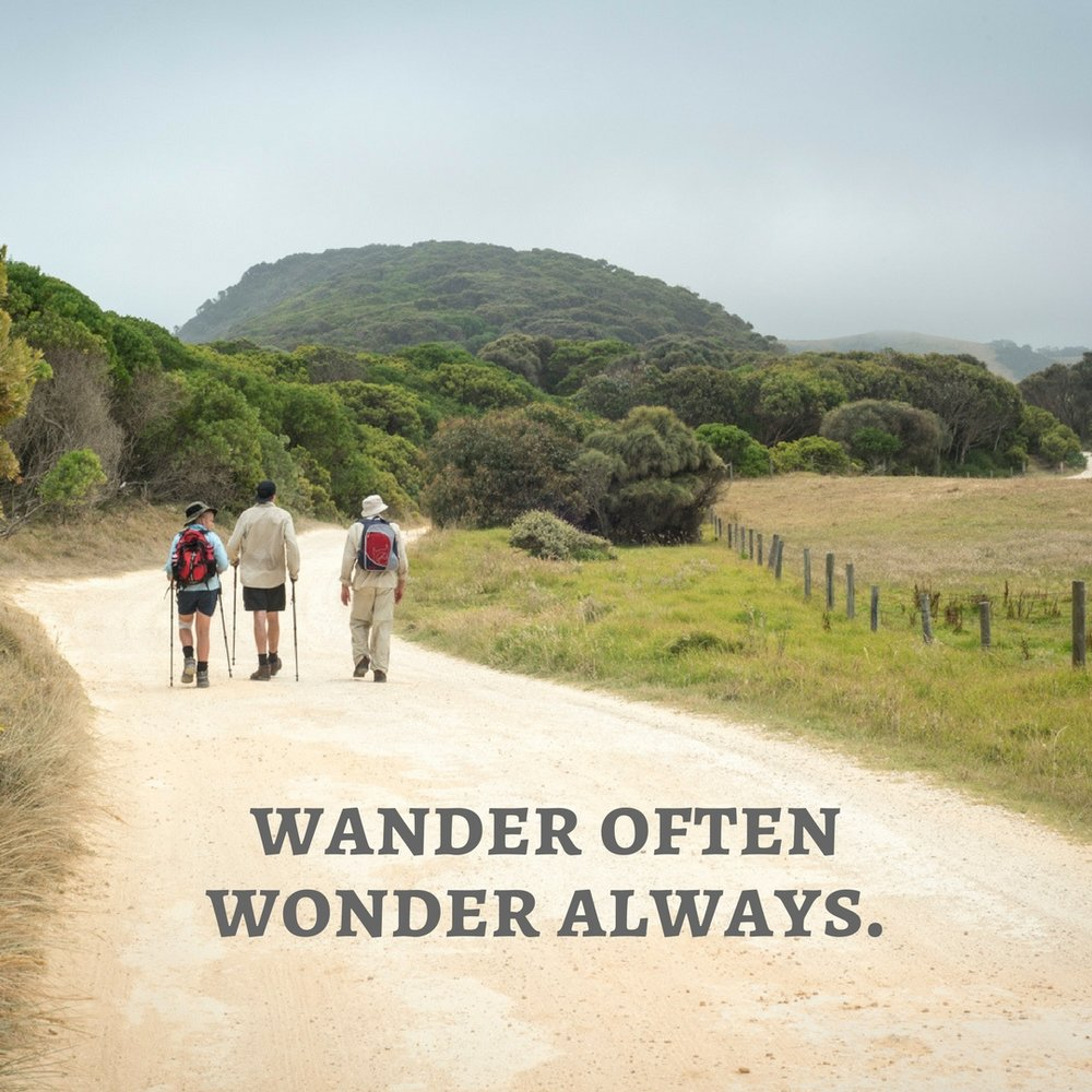 wander and wonder.jpg