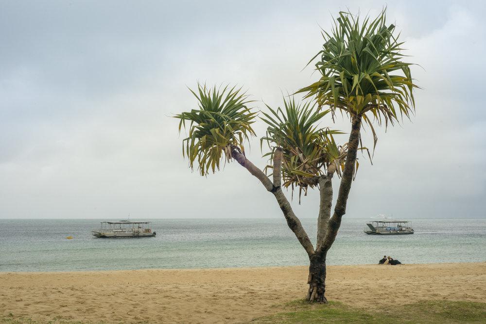 Queensland1018-34.jpg