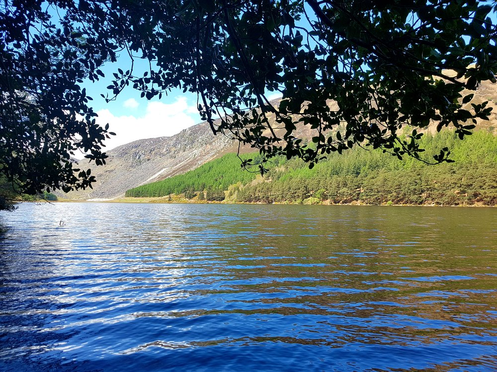 Amanda Landscape.jpg