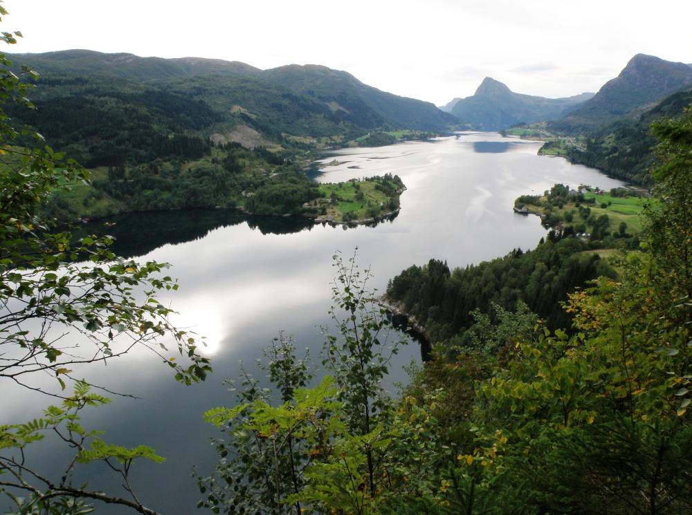 Frå Rytne Gard har du fantastisk utsikt over Dalsfjorden!