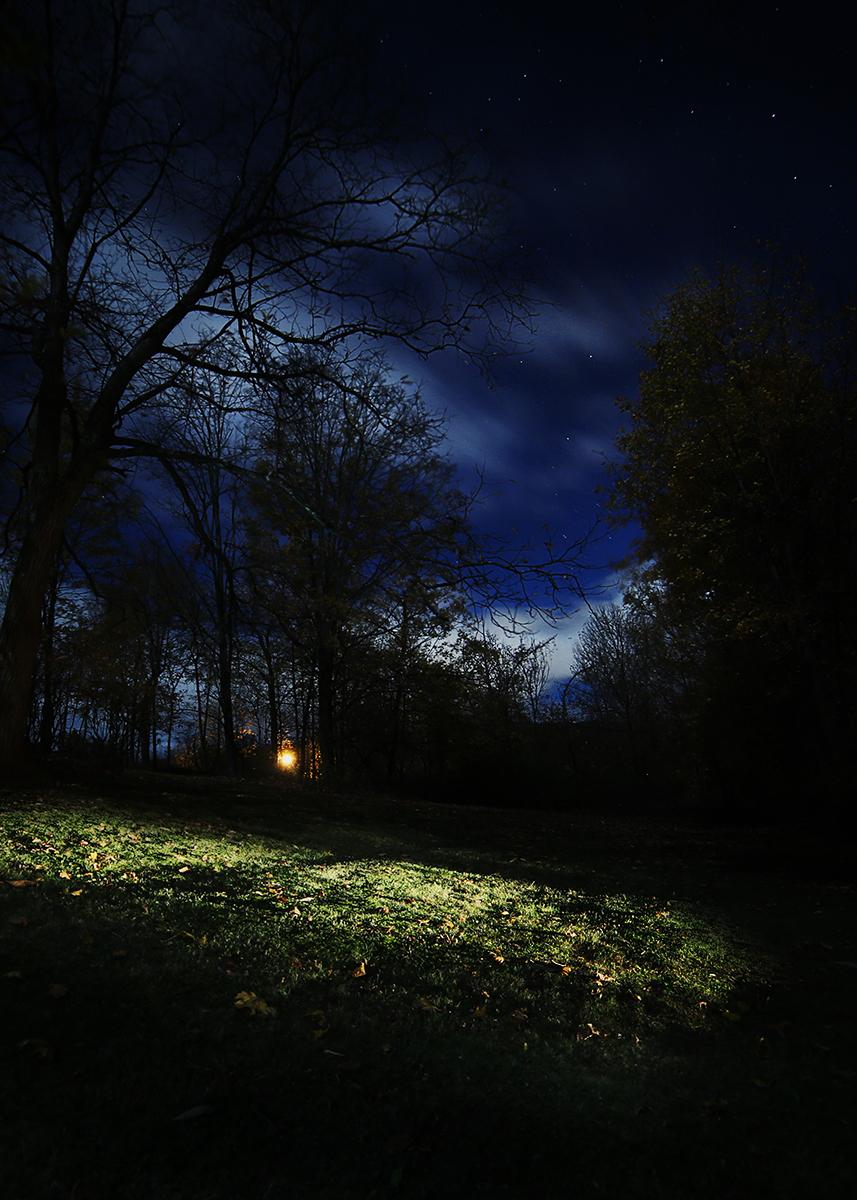 Lawn Lights, 2015