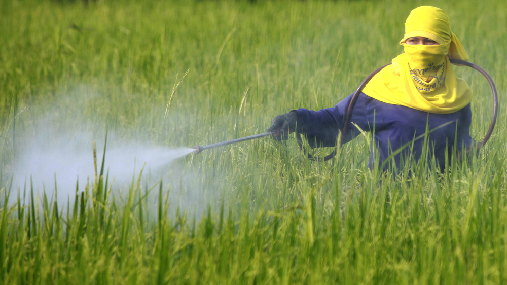 pesticide_spray.jpg