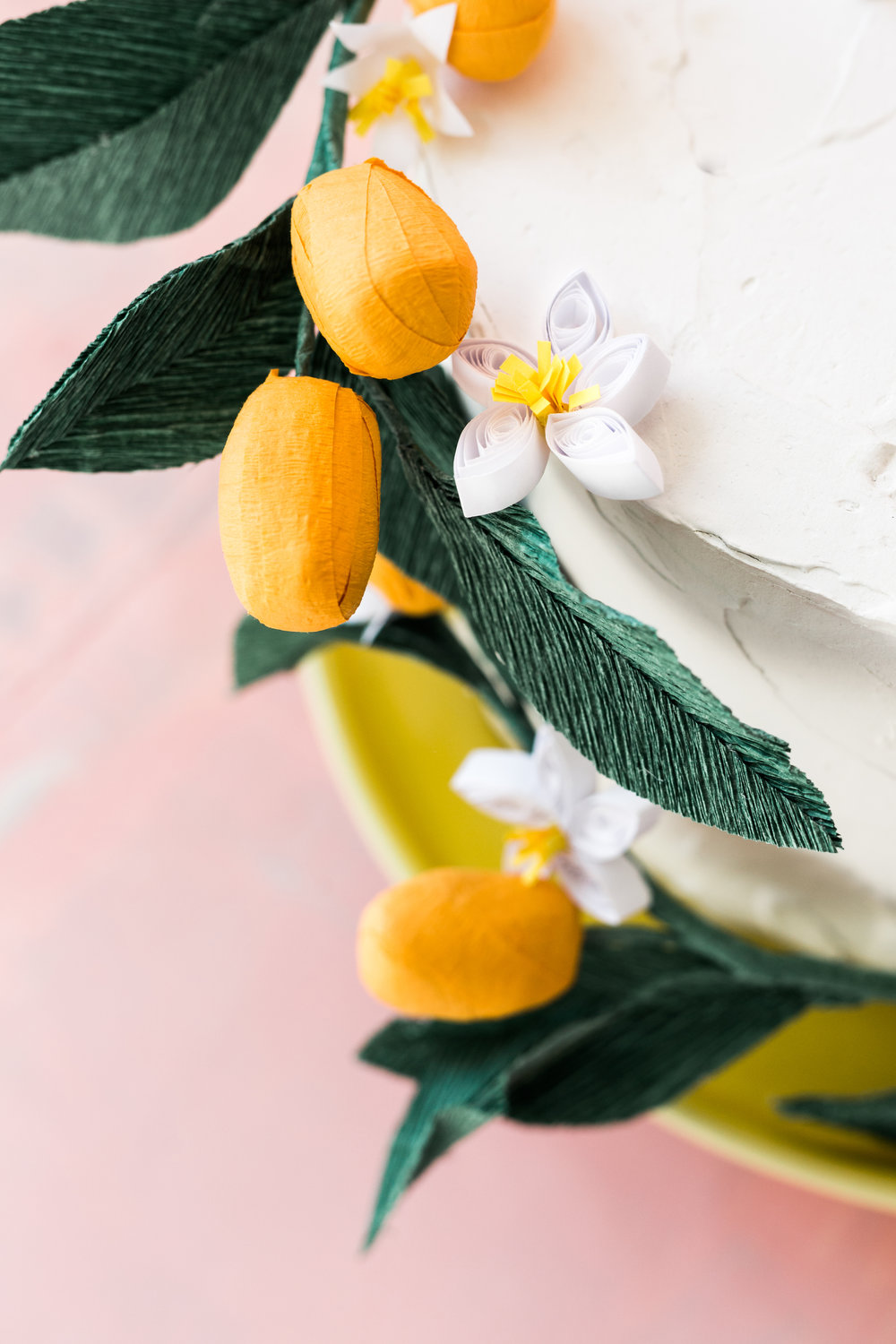 house-lars-built-kumquat-cake2.jpg