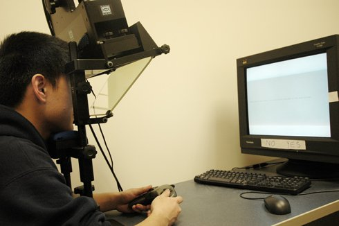 eye-tracking tools