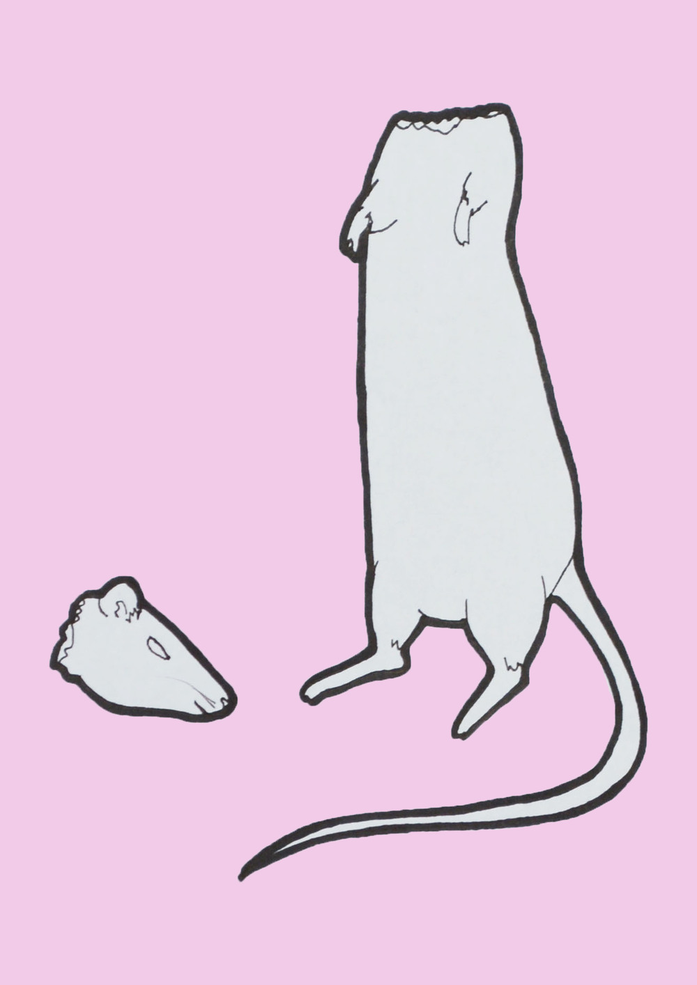 headless rat pink.jpg