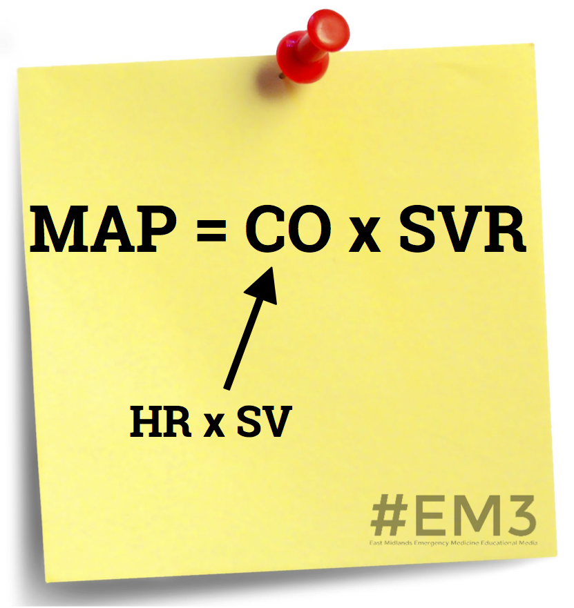 Consider using MAP as a surrogate for perfusion.