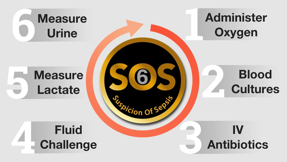 SOS Sepsis 6 infographic.jpg