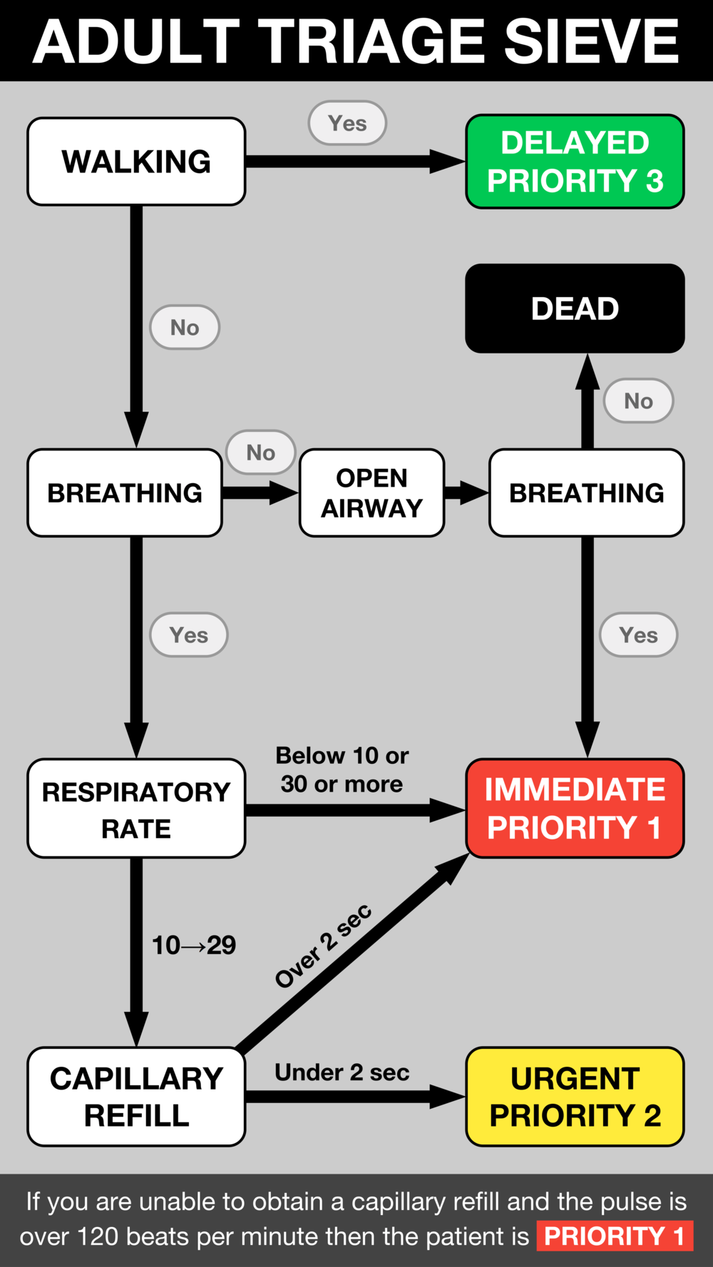 Triage Sieve (flowchart).png