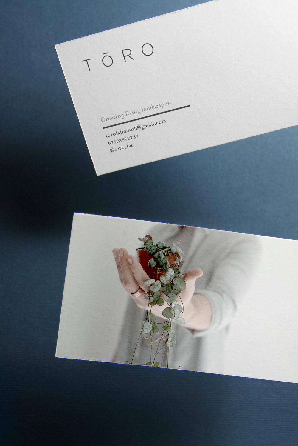 Toro Business Card Design