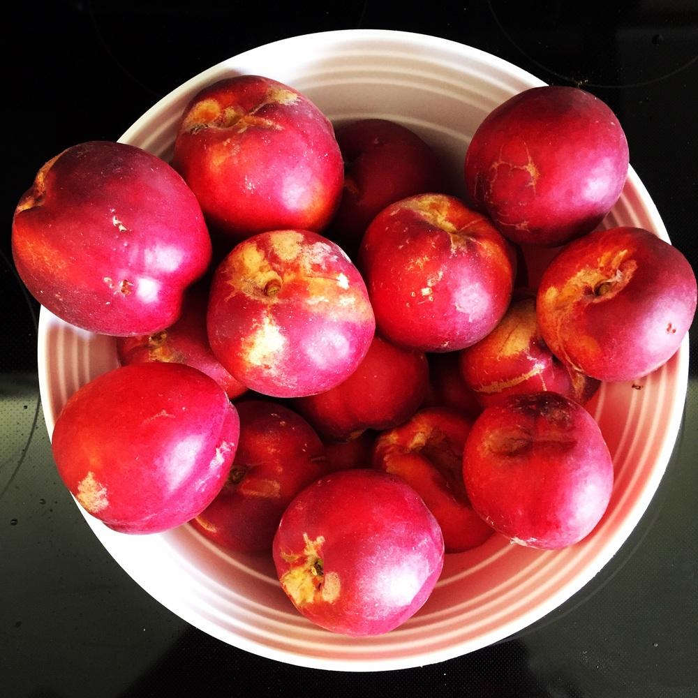 Nectarines.
