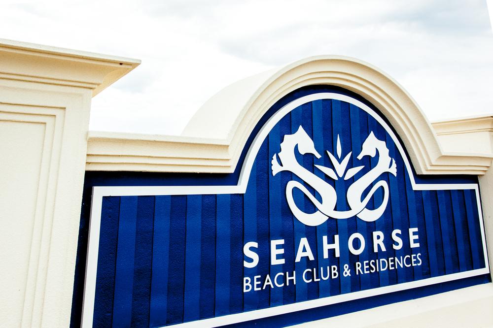 seahorse_sign_web.jpg