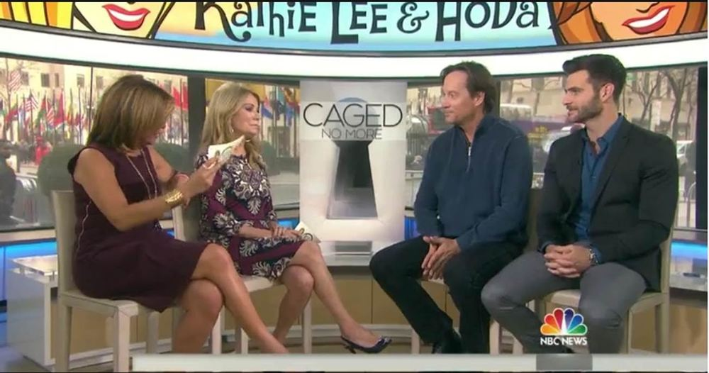 CAGED NO MORE actors Kevin Sorbo & Alan Powell on TODAY