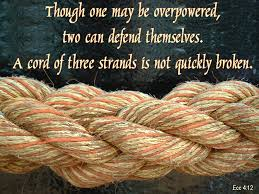 triple braided cord.jpg