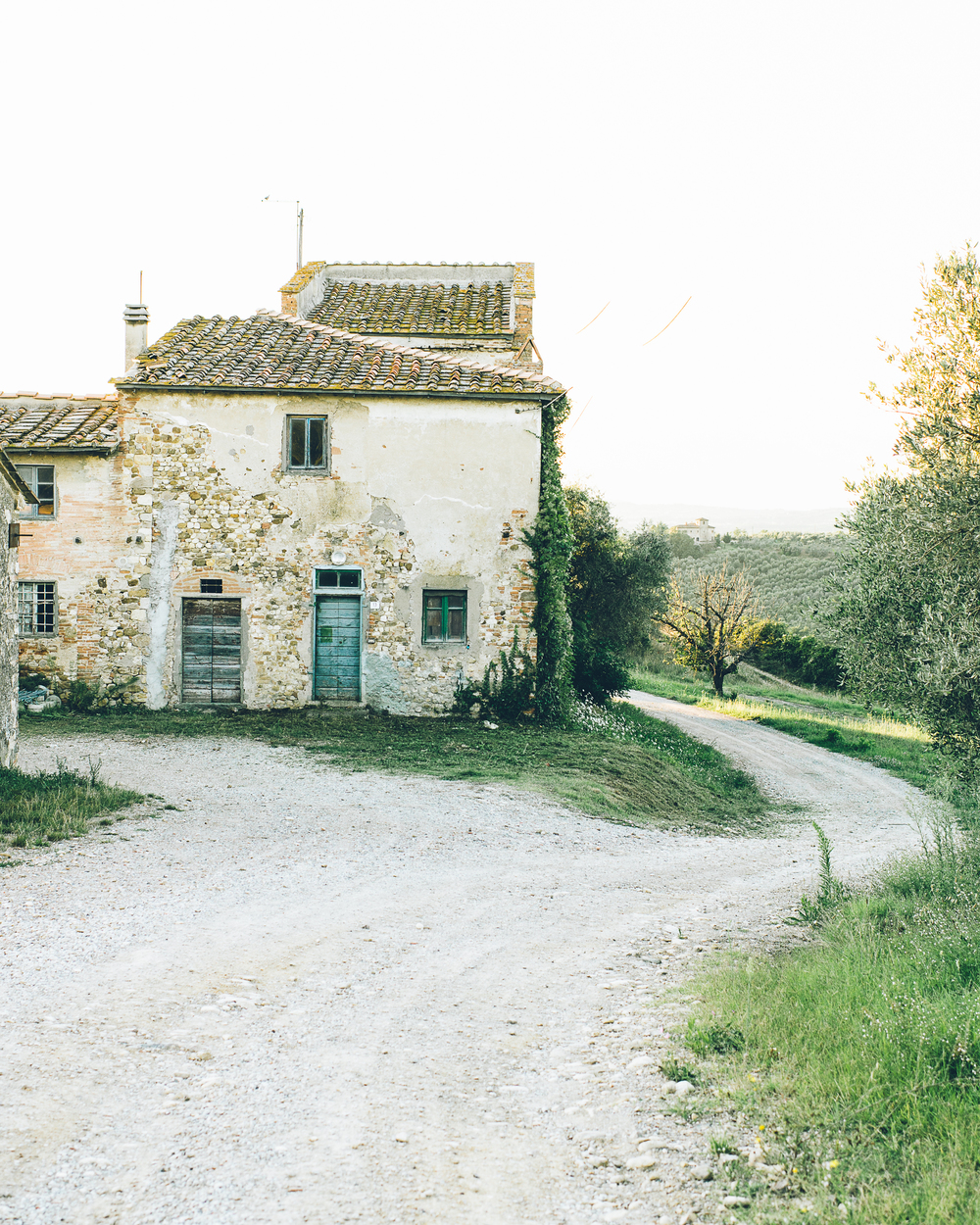 20140816-Tuscany241.jpg