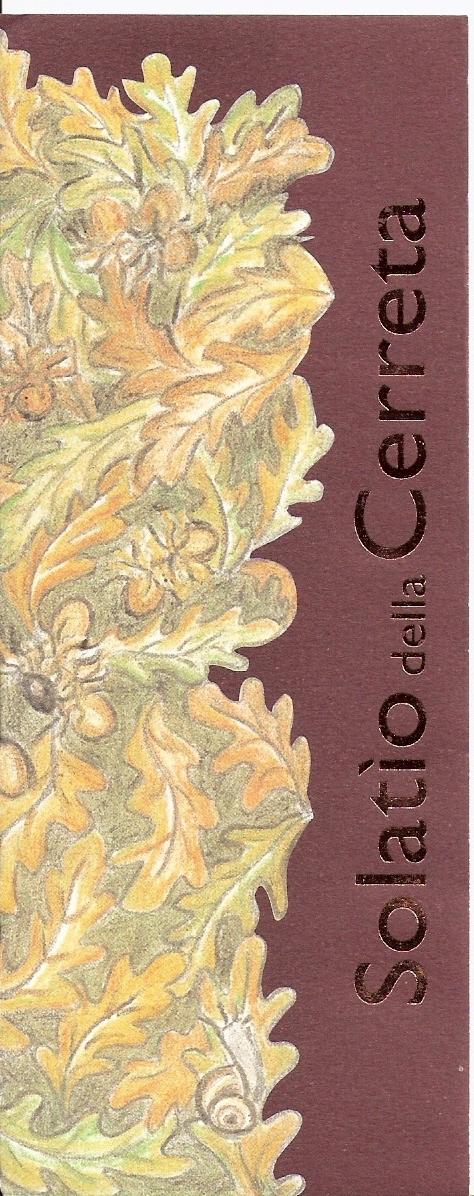 Traubensorte80% Sangiovese 20% Cabernet S., Barsaglina, Foglia Tonda, Colorino und Merlot WeinbeschreibungGetrennte Gärung der verschiedenen Rebsorten; danach einjähriger Ausbau Verfeinerung in Eichenfässern. Schwefelfrei!