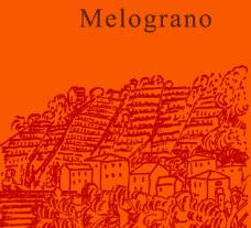 Podere Còncori - Toskana