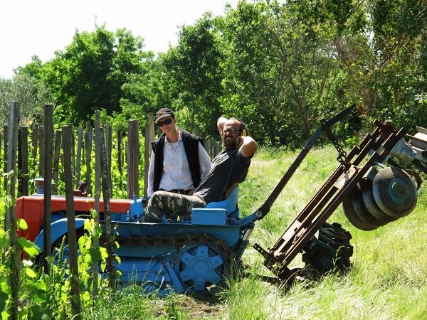"""Gianmarco und Clémentine sind zwei junge """"vignerons"""", die sich vor Jahren während der Arbeit in den Weingärten der Rhone kennengelernt haben. Seit damals ist kein Tag vergangen, an dem sie nicht versucht hätten, ihr gemeinsames Projekt voranzutreiben und zu verwirklichen, dessen Ziel es ist, aus lebendigen Weingärten Weine mit großer Persönlichkeit zu keltern. Das dafür ausgewählte Terroir liegt am Lago Bolsena, im Grenzgebiet zwischen Lazio und der Toskana, der Boden, in dem ihre Rebstöcke wurzeln, fußt auf vulkanischem Gestein. Ihre Handschrift hinterließen die beiden bereits, als sie 10000 Reben/Hektar (!) in ihre Weingärten setzten, die sie fast durchwegs manuell und mit großer Akribie und Leidenschaft kultivieren. Biodynamische Bewirtschaftung ist ein weiterer essentieller Bestandteil ihrer Philosophie. Seit der ersten Lese arbeiten Gianmarco und Clementine kompromisslos und einzig und allein mit dem, was in den Trauben steckt, ohne jegliche Zusätze. Dabei entstehen Jahr für Jahr circa 15 verschiedene Weine – stets nur ein paar hundert Flaschen/Wein und ausnahmslos von den Optionen geprägt, die der Jahrgang bereithält und die von den beiden entsprechend interpretiert werden. Ihr Repertoire reicht vom Litrozzo, einem vin de soif (Durstlöscher) in der Literflasche über diverse Schaumweinarten (Frizzante/Pet Nat) bis zu den Reserven, die über Jahre hinweg in verschiedenen Holzfässern reifen. Aleatico, der seit Jahrhunderten in der Gegend um Gradoli angebaut wird, vinifizieren die beiden trocken, sprudelnd und süß. Alle anderen Weine basieren auf alten, autochthonen Sorten, allen voran dem weißen Procanico und dem roten Greghetto (der lokale Name für Sangiovese)."""